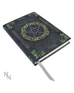 Embossed Book of Shadows Ivy 17cm Witchcraft & Wiccan Wiccan Premium Range