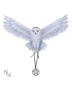Awaken your Magic (AS) 45cm Owls Popular Products - Light Artist Collections