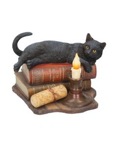 The Witching Hour (LP) 20.5cm Cats Popular Products - Light Artist Collections