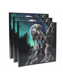 Guidance Crystal Clear Picture (LP) 40cm Set of 3 Wolves BLACK SALE 2020 Artist Collections