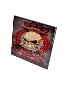 5FDP-Decade of Destruction Crystal Clear 32cm Band Licenses Five Finger Death Punch Artist Collections