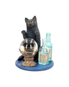 The Witches Apprentice (LP) 19.5cm Cats Lisa Parker Figurines Artist Collections
