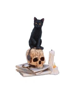 Officially Licensed Lisa Parker Spirits of Salem Figurine New Product Launch