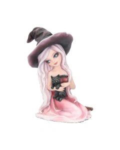 Rosa 15cm Witches Back in Stock Premium Range