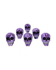 Purple Romance (Medium) 11cm (Pack of 6) Skulls Skulls (Premium) Premium Range