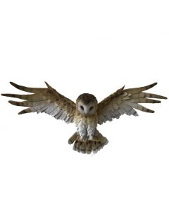 Wisdom Flight 54.5cm Owls Willow Hall Owls Nicht spezifiziert