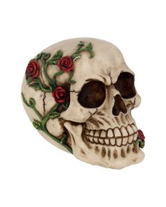 Rose From Beyond 15cm Skulls Mother's Day Value Range