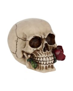 Rose From the Dead 15cm Skulls Stocking Fillers Value Range