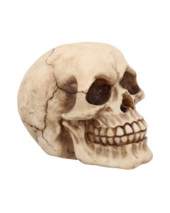 Joker 12cm Skulls Skulls Value Range