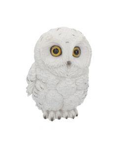 Winters Wisdom 19cm Owls Value Range