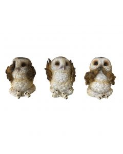 Three Wise Brown Owls 7.5cm Owls Owls Value Range
