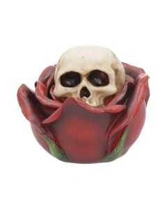 Beauty and the Deceased Skull and Rose Box 12.5cm Mother's Day