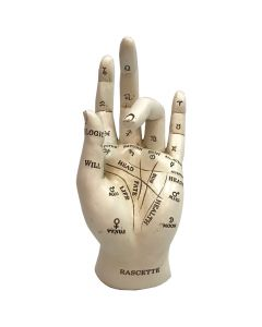 Palmistry 17.7cm Nicht spezifiziert Stocking Fillers Value Range