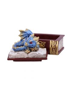 Blue Bedtime Stories Dragon Book Box Realm of Dragons