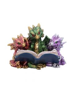 Tales of Fire Reading Book Dragon Figurine Realm of Dragons