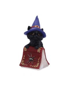 Hocus 12.7cm Cats Coven Keepers Value Range