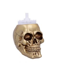 Brush with Death Golden Skull Toilet Brush Holder New Product Launch