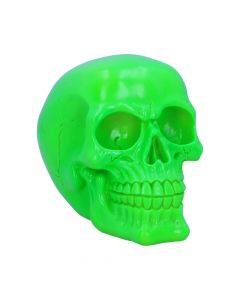 Psychedelic Skull Green 15.5cm Skulls New in Stock Value Range