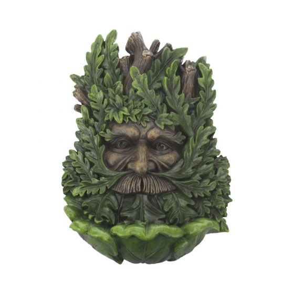 Wise Oak 23.7cm Tree Spirits Tree Spirits Premium Range