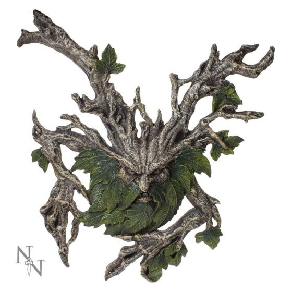 Wylde Jack 39.4cm Tree Spirits Tree Spirits Premium Range
