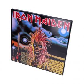 Iron Maiden Crystal Clear Picture 32cm
