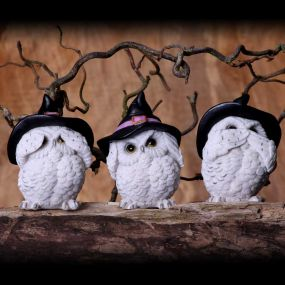 Three Wise Feathered Familiars 9cm