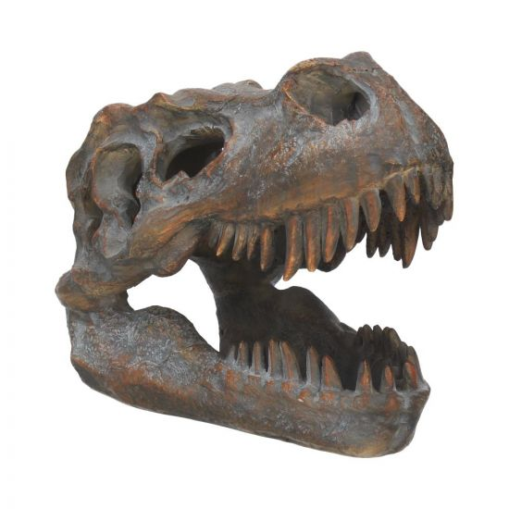 Tyrannosaurus Rex Skull Freestanding 16cm