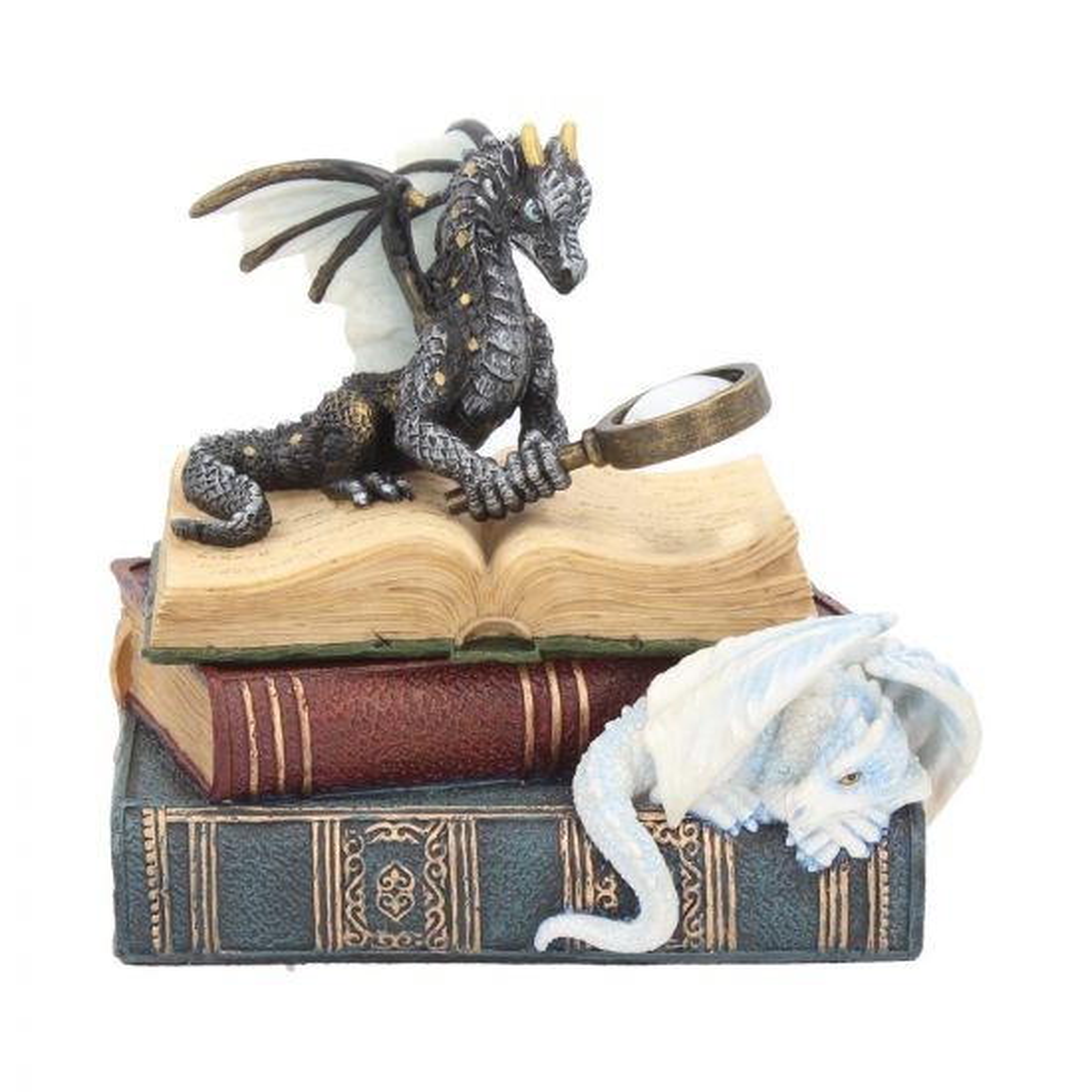 Miniature Scholars Trinket Box 13cm Dragons Premium Dragon Boxes Premium Range