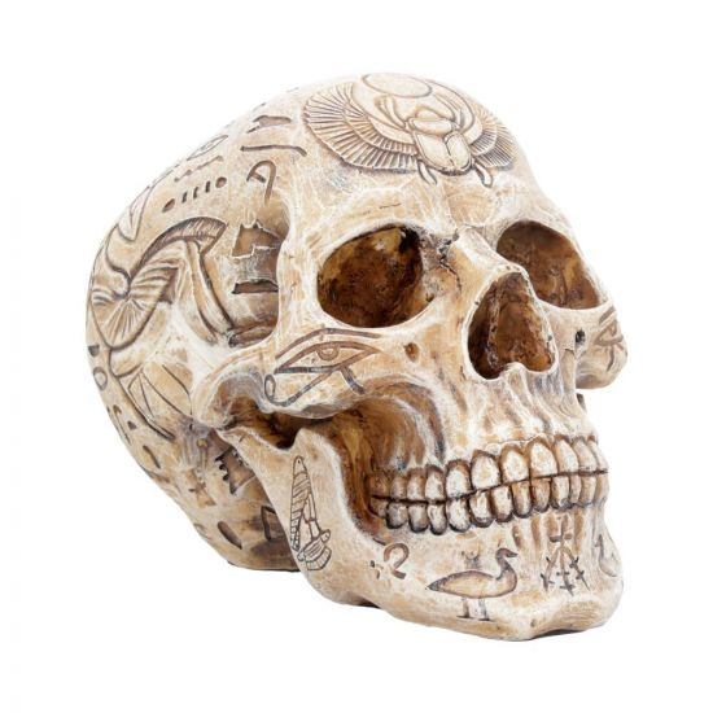 Hieroglyphic Skull 15cm Egyptians Historical Premium Range