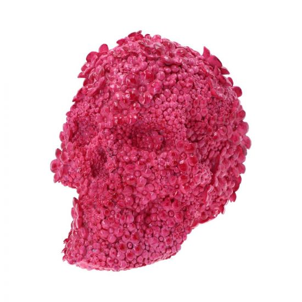 Fuschia Fate 21cm Skulls Verkaufte Artikel